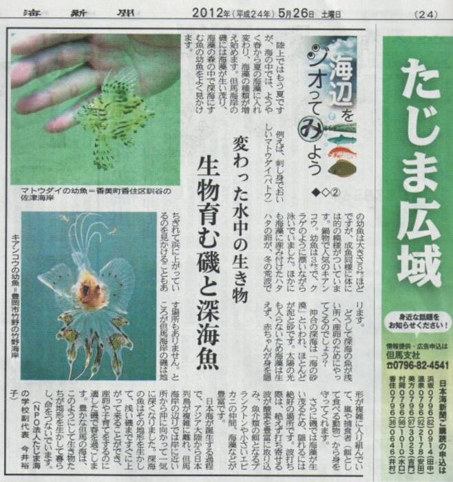 日本海新聞「海辺をジオってみよう」