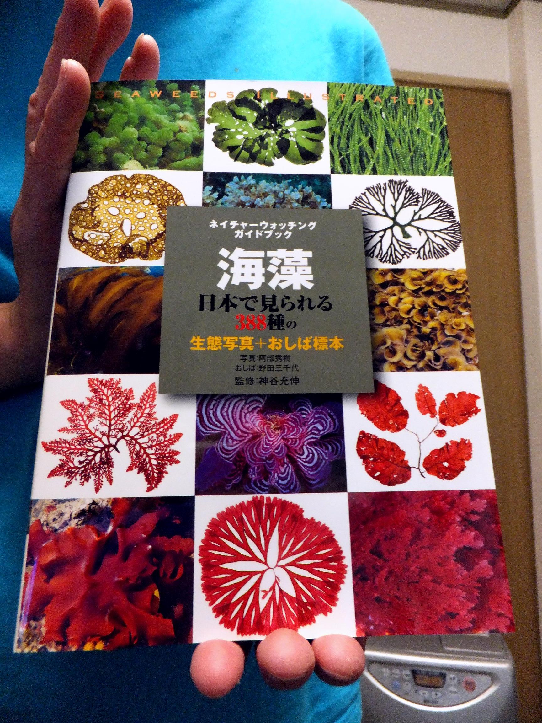 『海藻』日本で見られる388種(表紙)