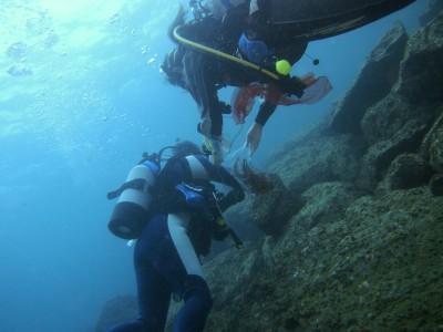 海底清掃ダイバー